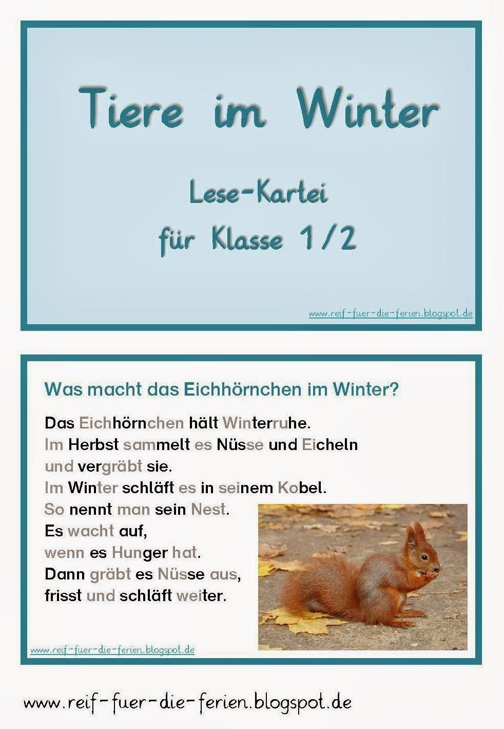 Tiere Im Winter Lesekartei Reif Fur Die Ferien Wald Grundschule Kartei