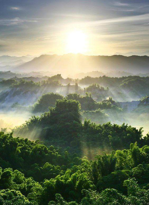 Картинки природа и доброе утро