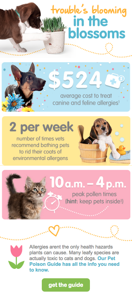 How To Help Furry Friends Fight Back Against Allergies Infographic
