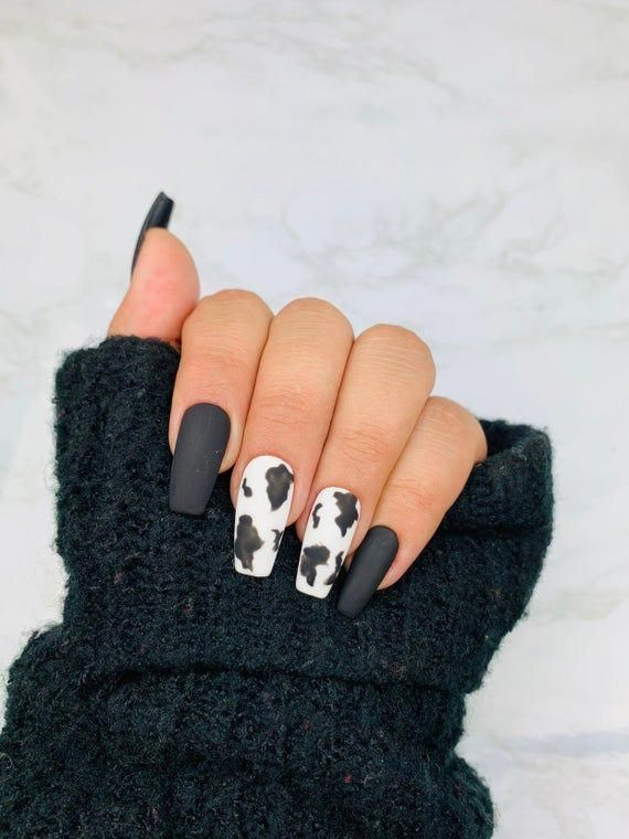 Ready To Ship Cow Print Press On Nails Cow Nails Black Etsy In 2020 Cow Nails Fake Nails White Simple Acrylic Nails