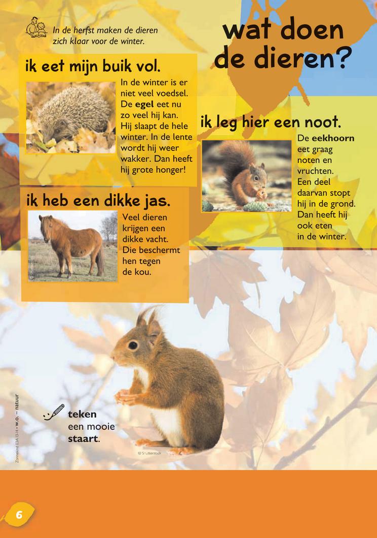 Vaak Wat doen de dieren in de herfst? @keireeen | groep 4 | Pinterest #WB34