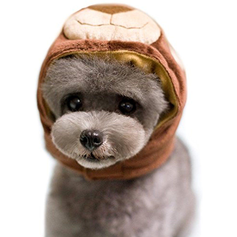 Alfie Pet by Petoga Couture Qeno Bear Hat for Party