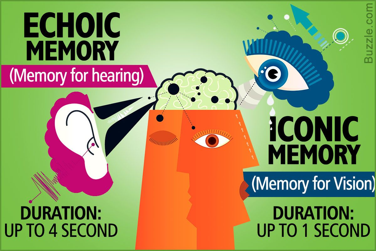 This graphic shows the basic difference between echoic and