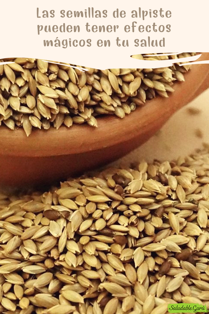 alimentos enteros alpiste semillas y diabetes