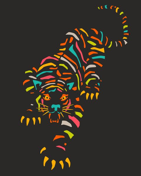 Tiger Stretched Canvas by Jazzberry Blue | Society6