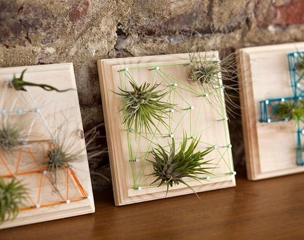 Wall Hanging Flowers Holder Geometric Shaped Nordic Style Air Plants Shelf Home