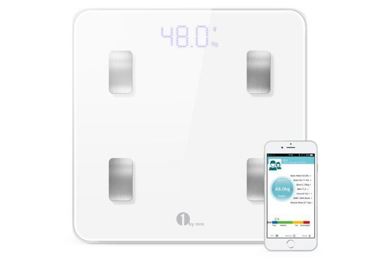 Online Body Fat Scale