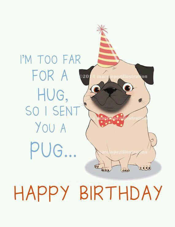 Happy Birthday Happy Birthday Dog Happy Birthday Pug Birthday