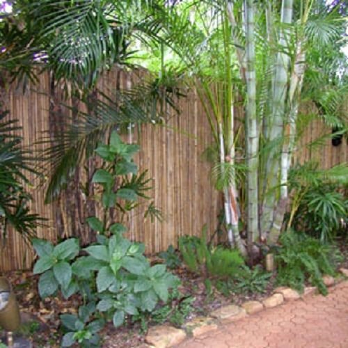 Garden bordering design rolled bamboo fencing interior for Bamboo ideas for backyard
