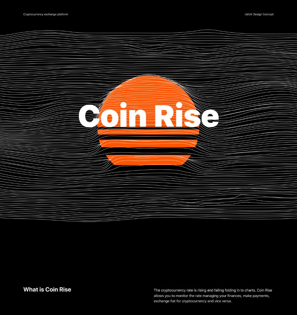 rise cryptocurrency platform