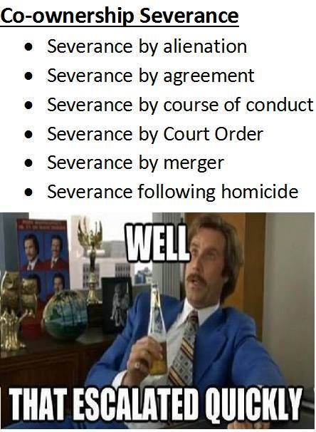Law School Memes With Images Law School Humor Law School
