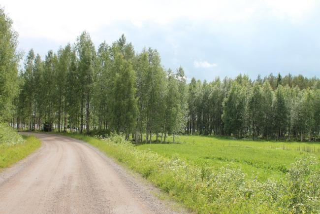 Myydään Maatila 5 huonetta - Kannonkoski Kannonjärvi Harjuntie 480 - Etuovi.com 7690720