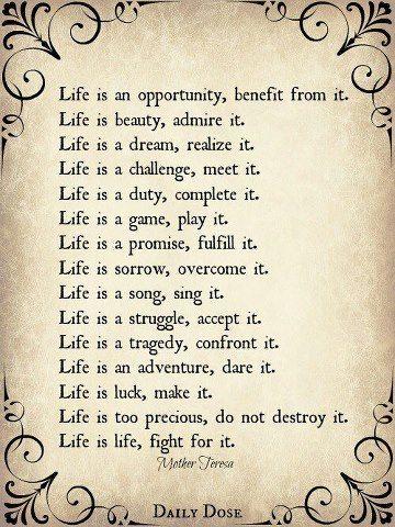 LifeMother Teresa FAITH LES TROIS THÉRÈSES Life Quotes Enchanting Life Quotes Mother Teresa