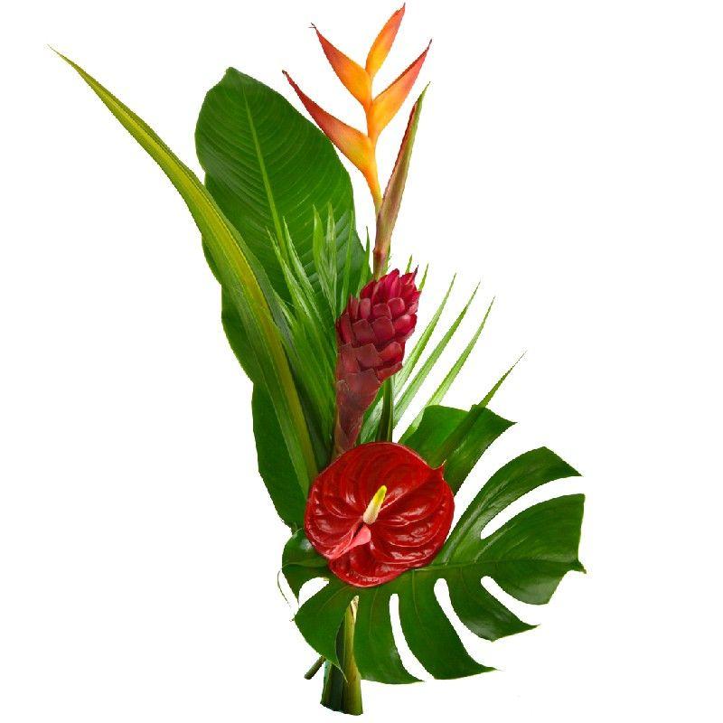 bouquet long exotique ce bouquet de fleurs se compose de 1 h liconia 1 alpinia et 1 anthurium. Black Bedroom Furniture Sets. Home Design Ideas