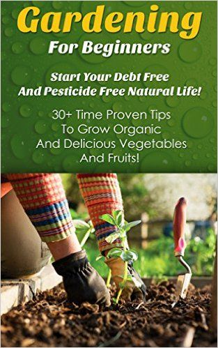 Gardening For Beginners Start Your Debt Free And Pesticide Free