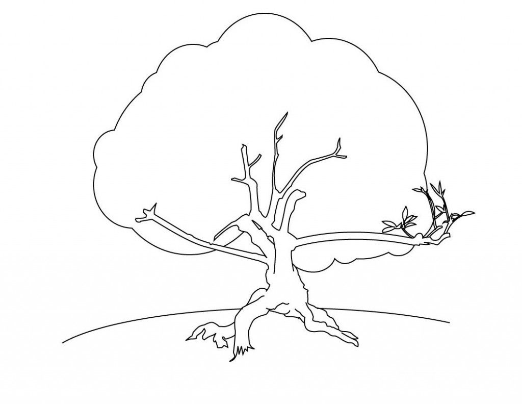 Free Printable Tree Coloring Pages For Kids In
