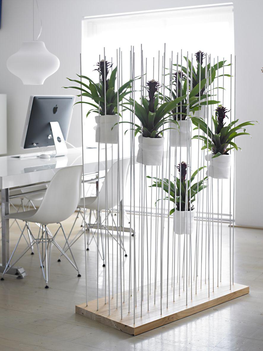 Bromelia natural room devide art in pinterest interior