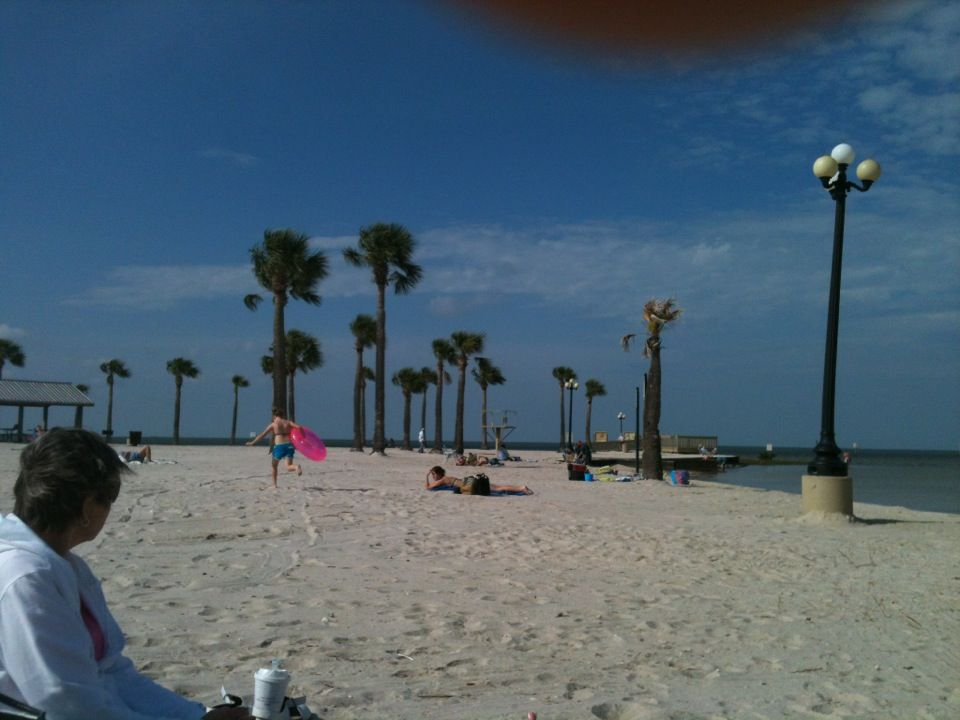 Pine Island Beach In Spring Hill FL