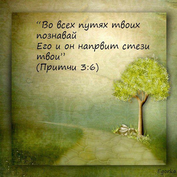 открытки со словом божиим ряд