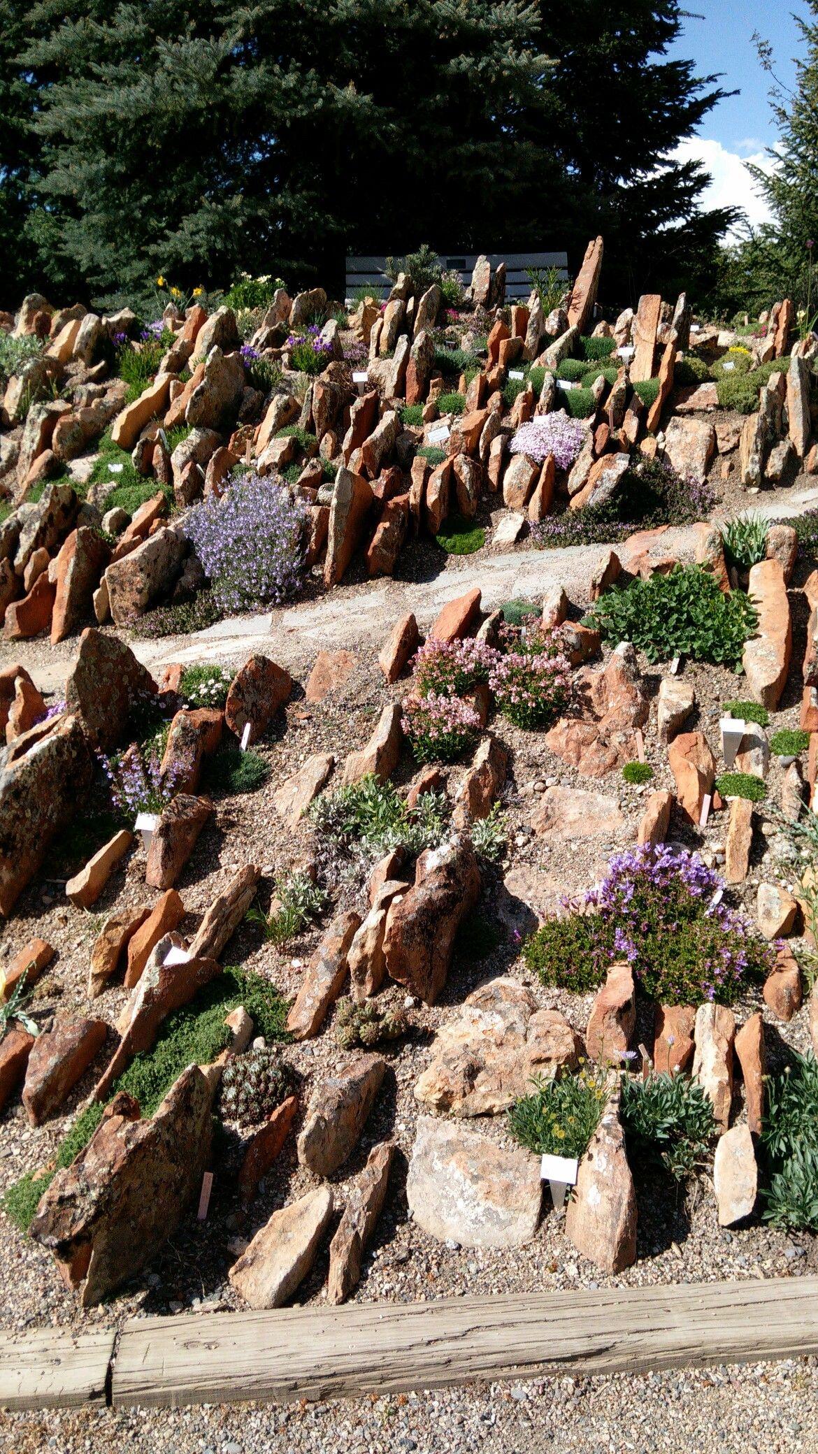 Botanical Garden @ Steamboat Springs, CO | Steamboat Springs, CO ...