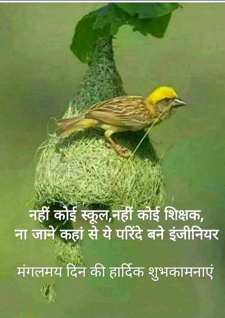 Pin by Ashok Joshi on Gallery   Hindi good morning quotes ...