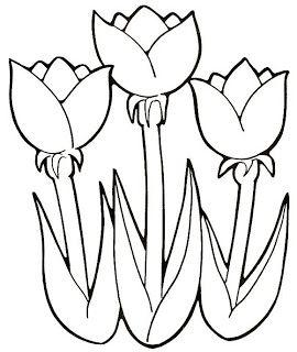 Primavera 36 Desenhos De Flores Para Colorir E Pintar Cantinho