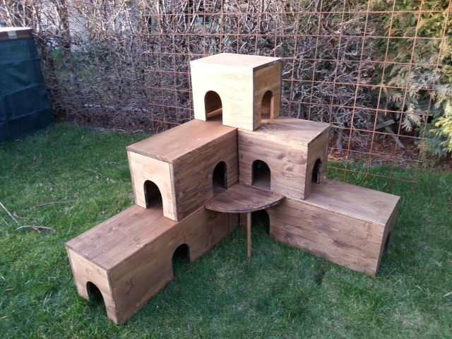 tipps f rs au engehege gesucht kaninchen forum by. Black Bedroom Furniture Sets. Home Design Ideas