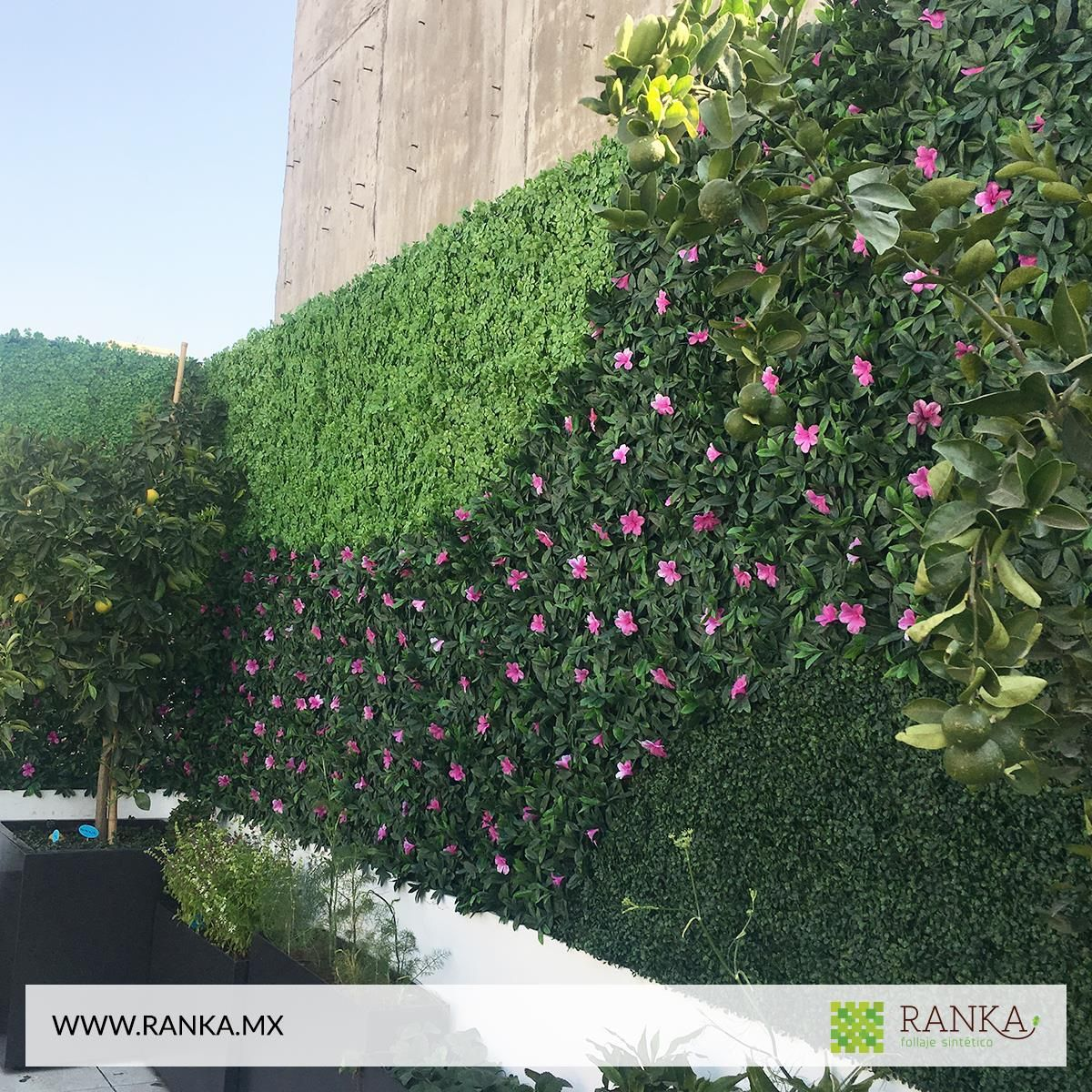 Jardinera decorativa con begonia alto realismo in 2019 - Muros de jardin ...