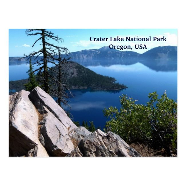 Create your own Postcard | Zazzle.com