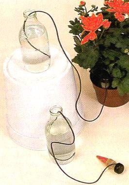 irrigazione piante vacanze