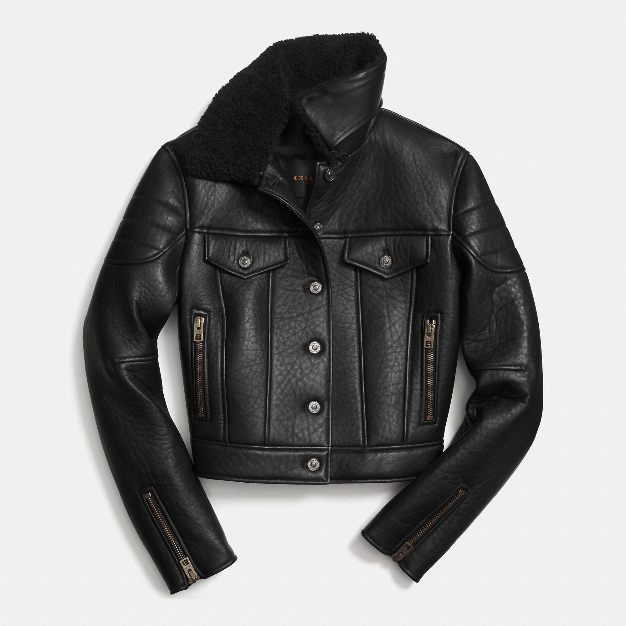 Coach Fall 2014 Leather Biker Jacket Leather jacket