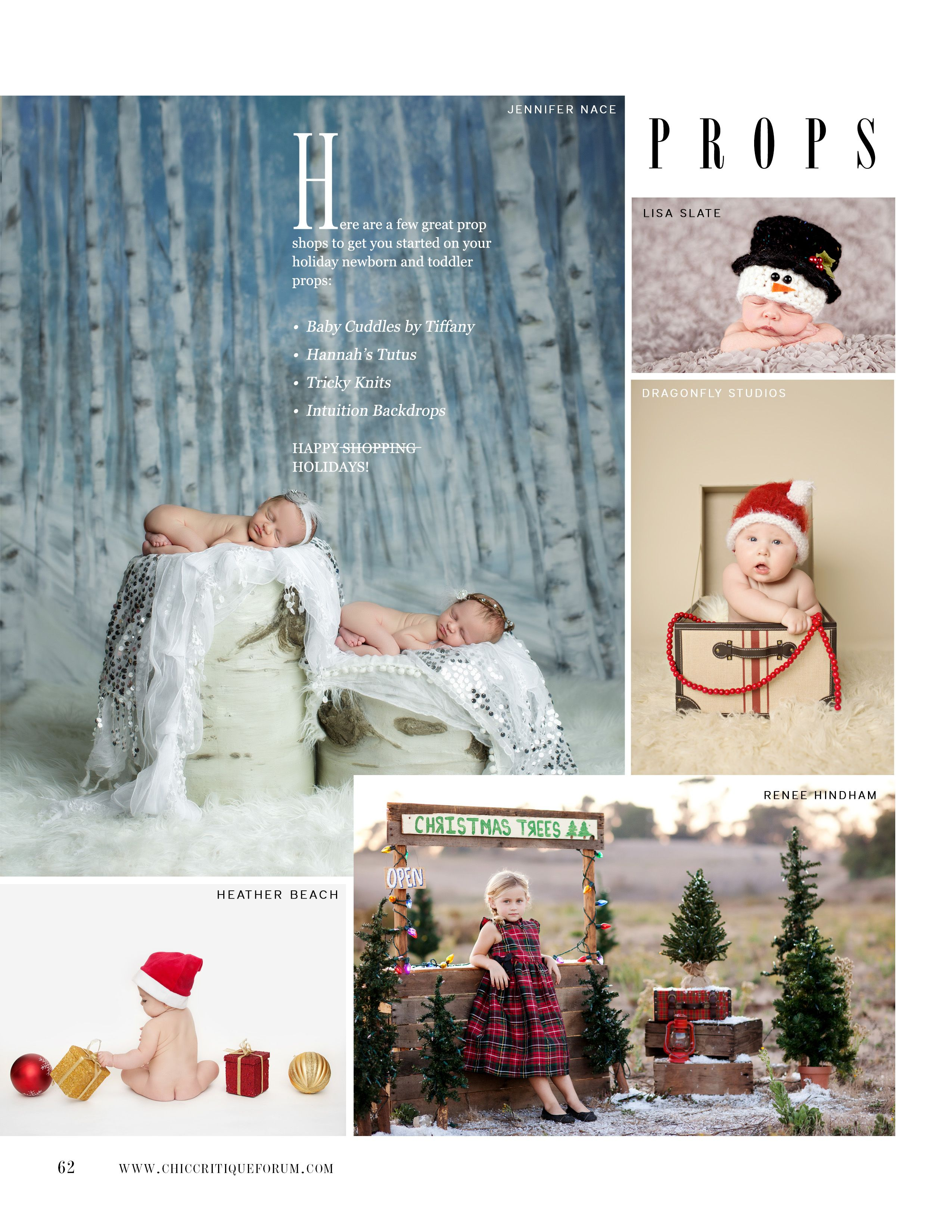 chic critique prop insanity holiday fall photography prop ideas