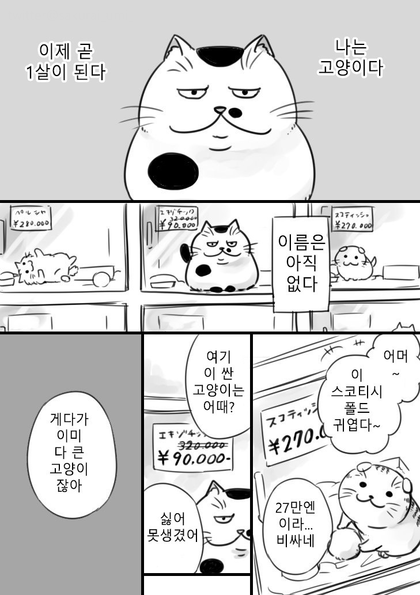 아저씨와 고양이 네이버 블로그 고양이 만화 고양이 그림 캐릭터 일러스트