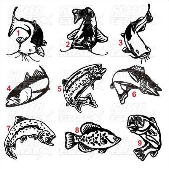 Vinyl decal 12 fish window decal bass trout catfish by for Fishing vinyl decals