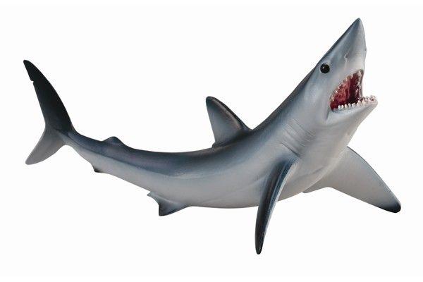 dioramas tiburones prehistoricos - Buscar con Google TIBURONES