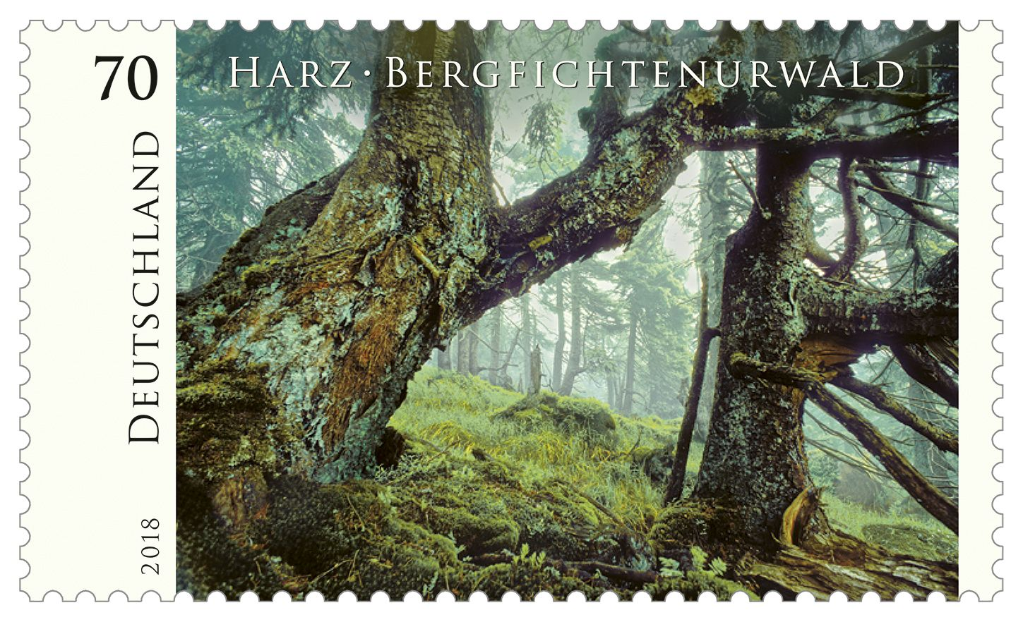 pinmody harp on a stamp collection with images