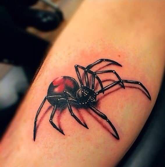 Top 3d Spider Tattoos Ideas Page 6 Spider Tattoo Black Widow