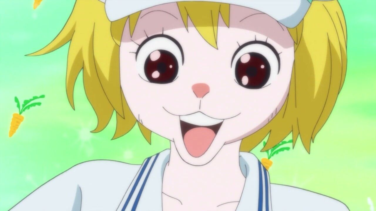 Carrot wearing a marine uniform & is smiling - One Piece ...