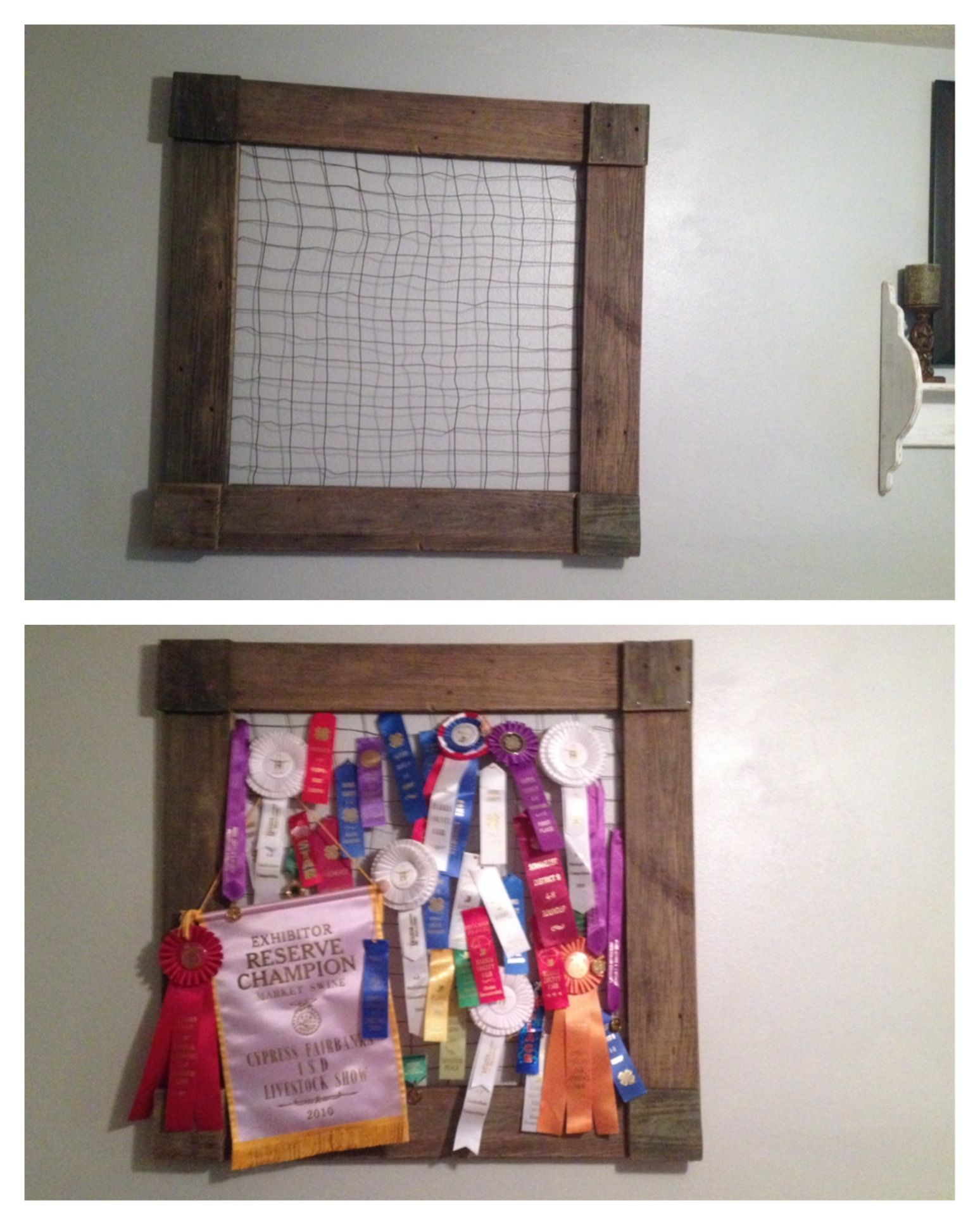 Displaying Ffa And 4h Ribbons Perfect Use For That Old Rabbit
