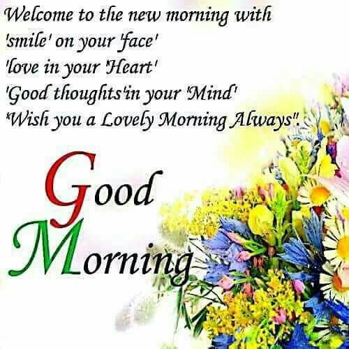 Good Morning Greetings Greeting Pinterest Morning Quotes