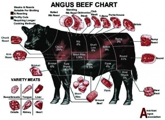 angus beef chart Marly Ann has many fans! in 2019 Angus beef