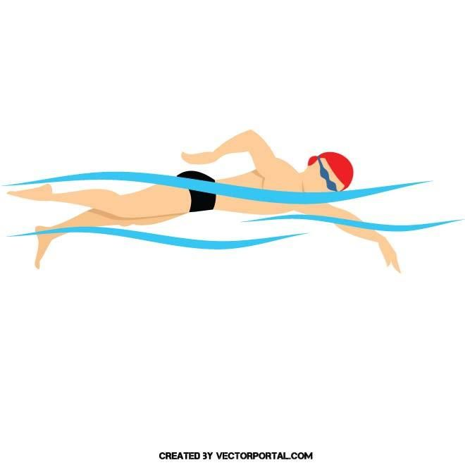 Swimming vector illustration. in 2019   Vector free, Free ...