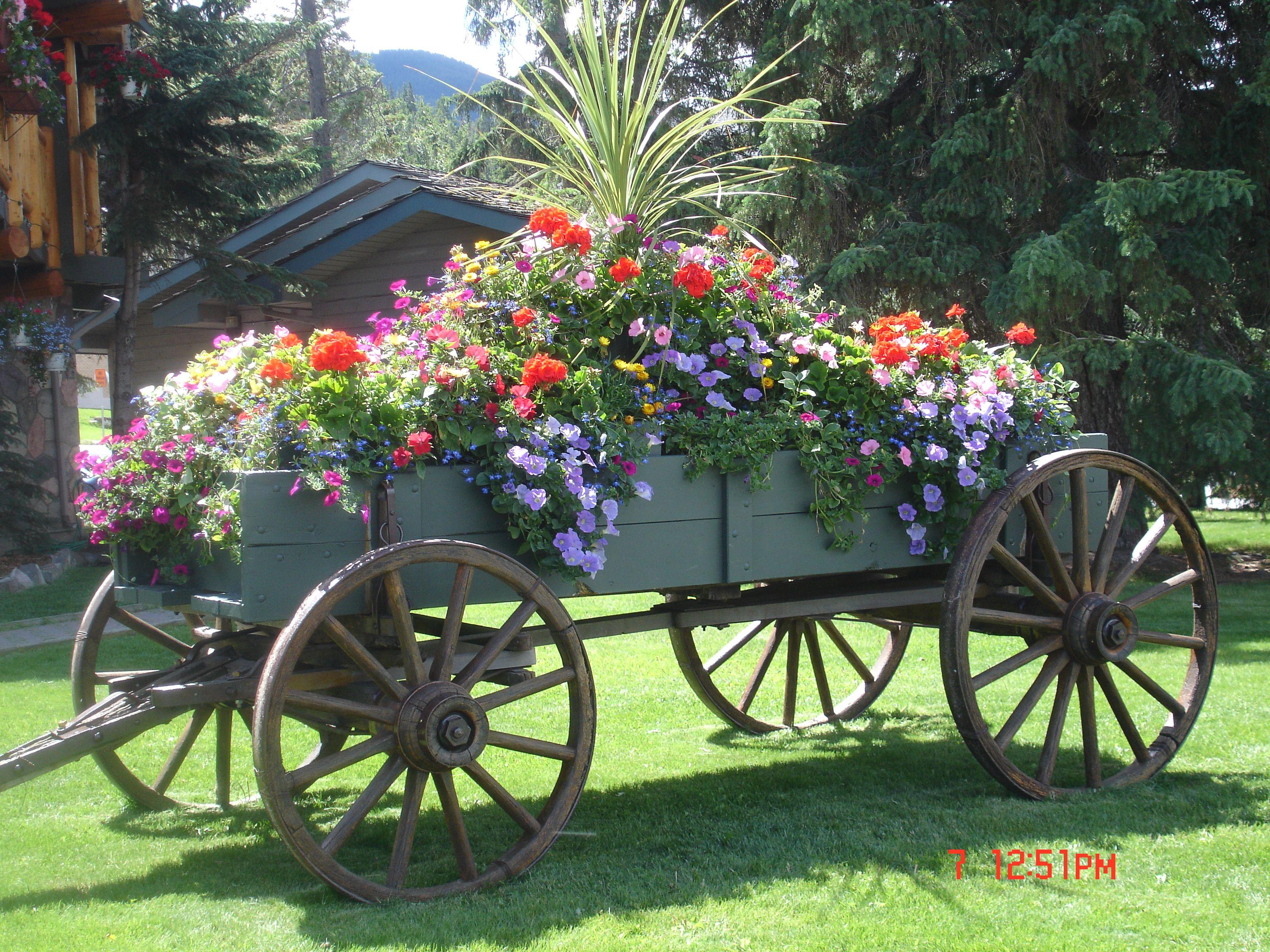 Overflowing Farm Wagon. Beautiful. Wagons In Garden