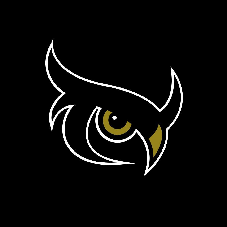 Night Owls Kronum Club Logo Dengan Gambar Burung Hantu Seni Logo Keren