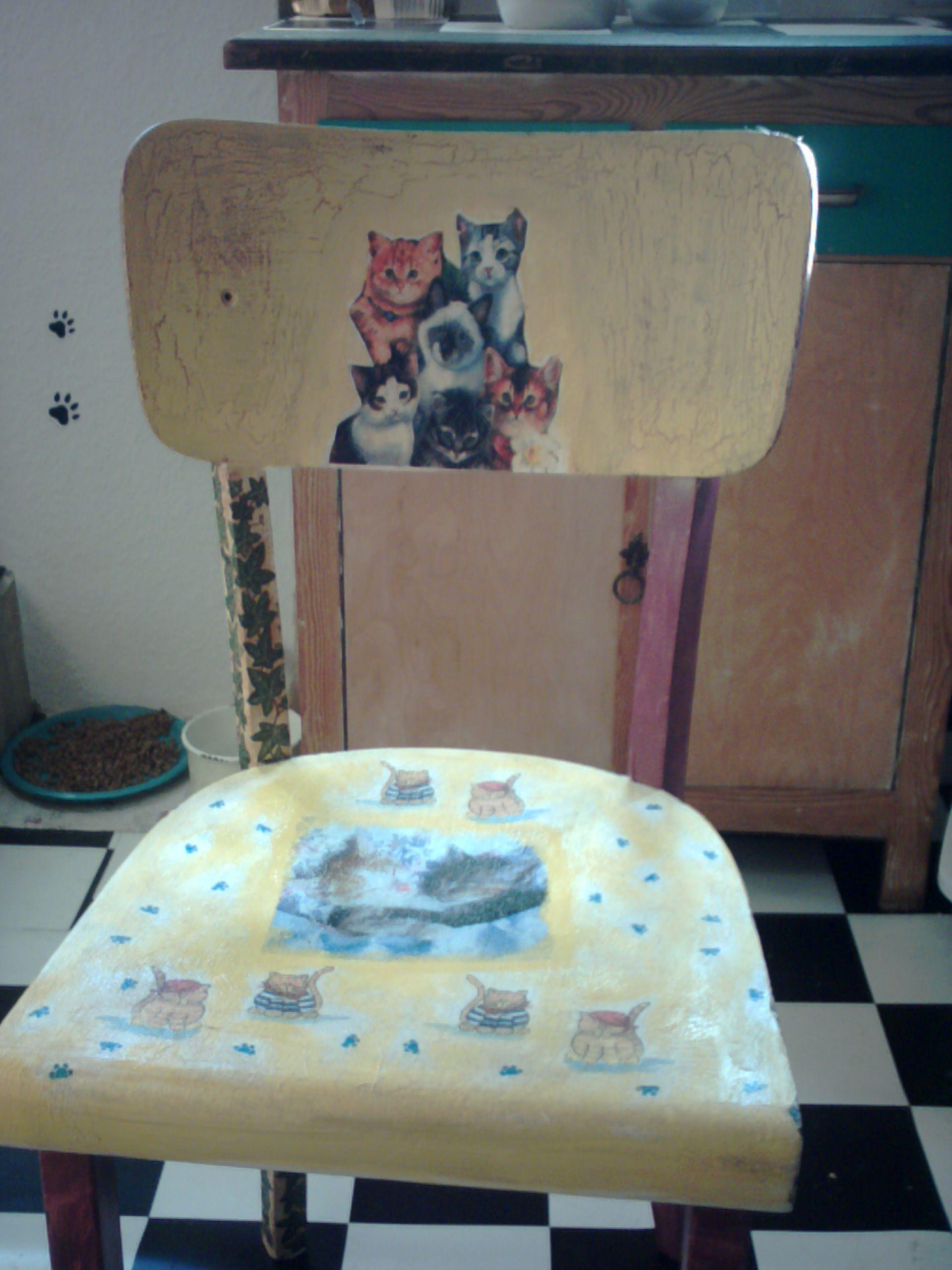 der nächste stuhl für katzenfans