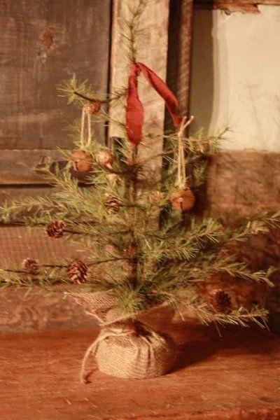 Charlie Brown Christmas Tree Christmas ☃ Charlie Brown