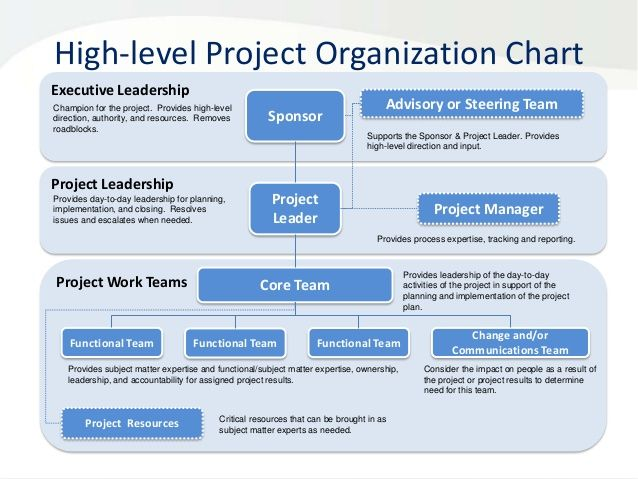 roles and responsibilities template project management role and