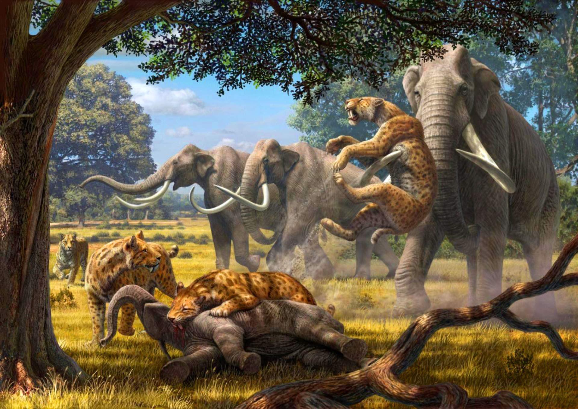 Pleistocene-ecosystems.