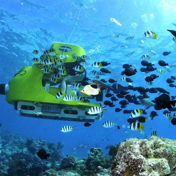The Ultimate Guide To Your Beautiful Bora Bora Honeymoon Mywedding Mauritius Holiday Mauritius Tour Bora Bora Honeymoon