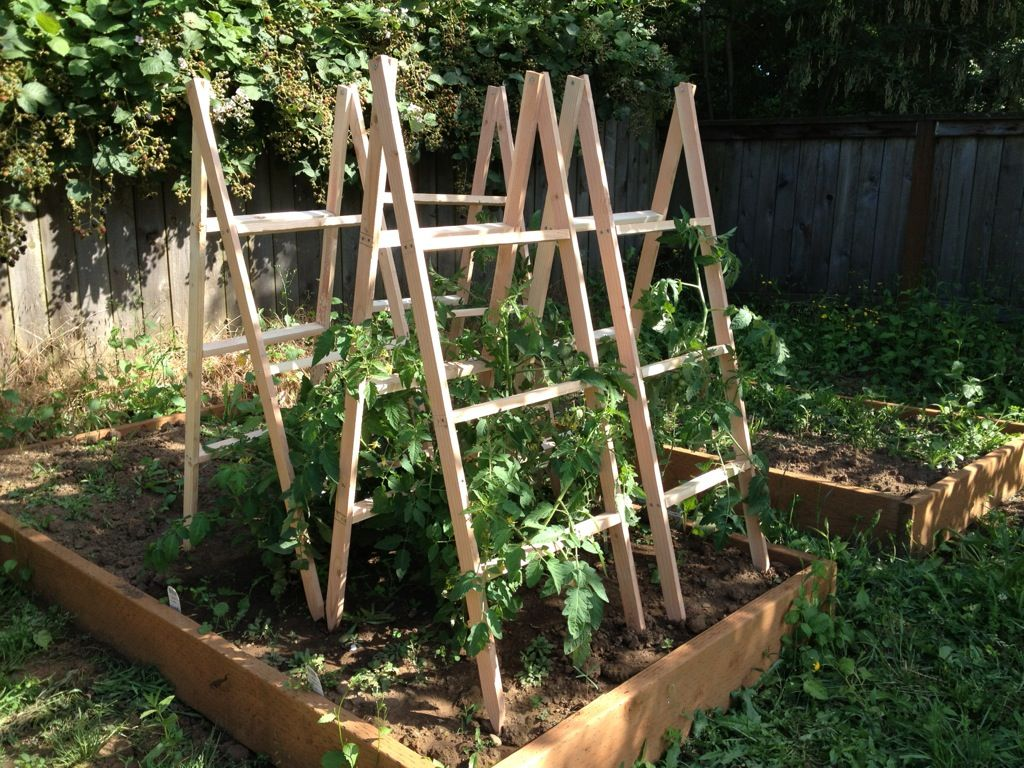 Wooden Tomato Cages Homemade Tomato Cages Marshalls Weblog